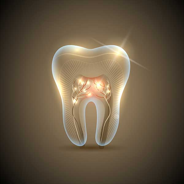 Root Canal Therapy   Montgomery Dental Centre   NW Calgary   Family and General Dentist